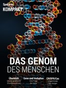 Spektrum Kompakt - Das Genom des Menschen
