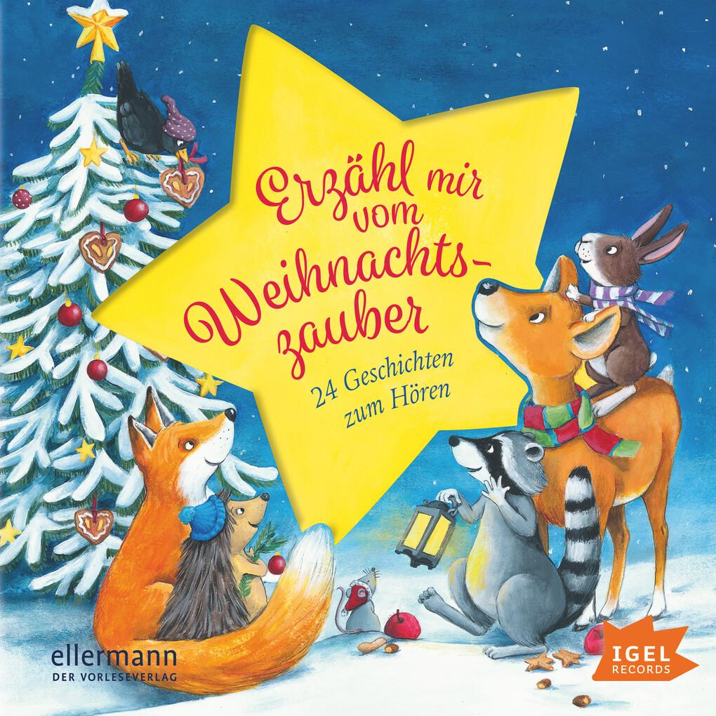 Erzähl mir vom Weihnachtszauber als Hörbuch Dow...