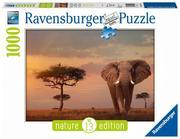 Ravensburger Spiel - Nature No. 14 Edition 01/2018SH, 1000 Teile
