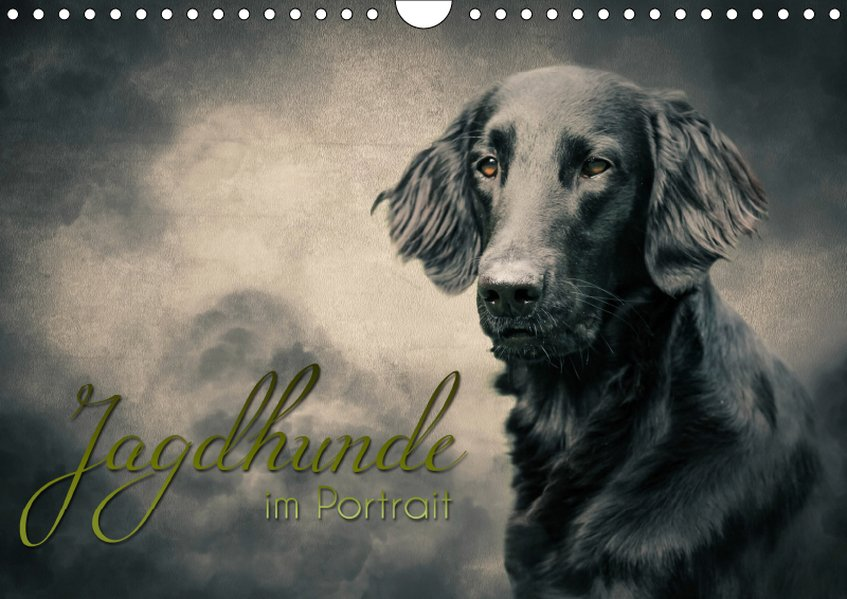 Jagdhunde im Portrait (Wandkalender 2019 DIN A4...