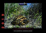 Schildkröten-Jahreskalender 2019