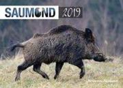 Saumond 2019