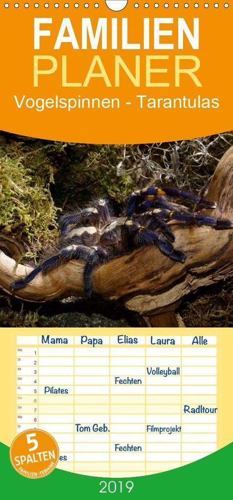 Vogelspinnen - Tarantulas - Familienplaner hoch...