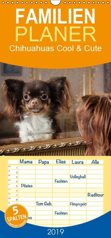 Chihuahuas - Cool and Cute - Familienplaner hoc...