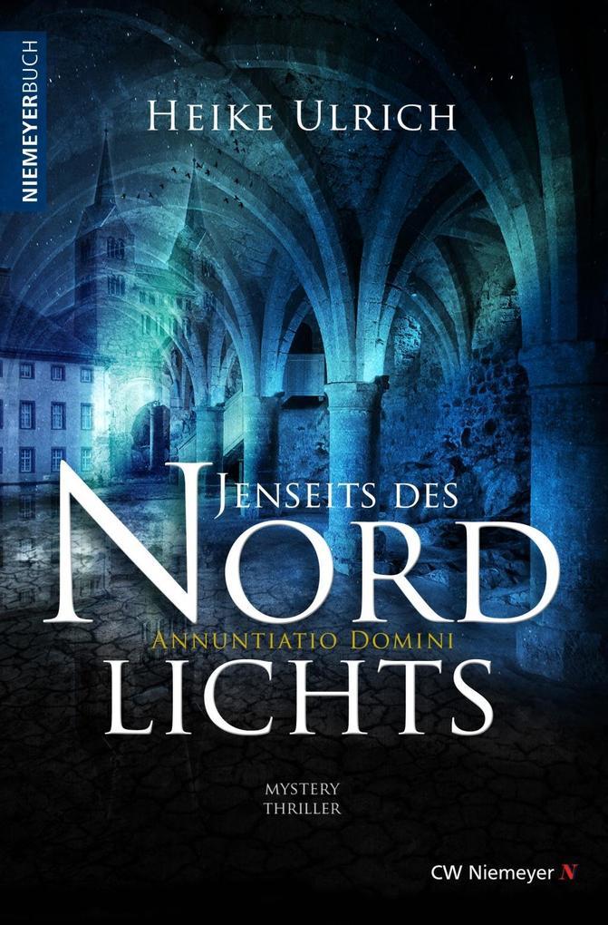 Jenseits des Nordlichts als eBook epub