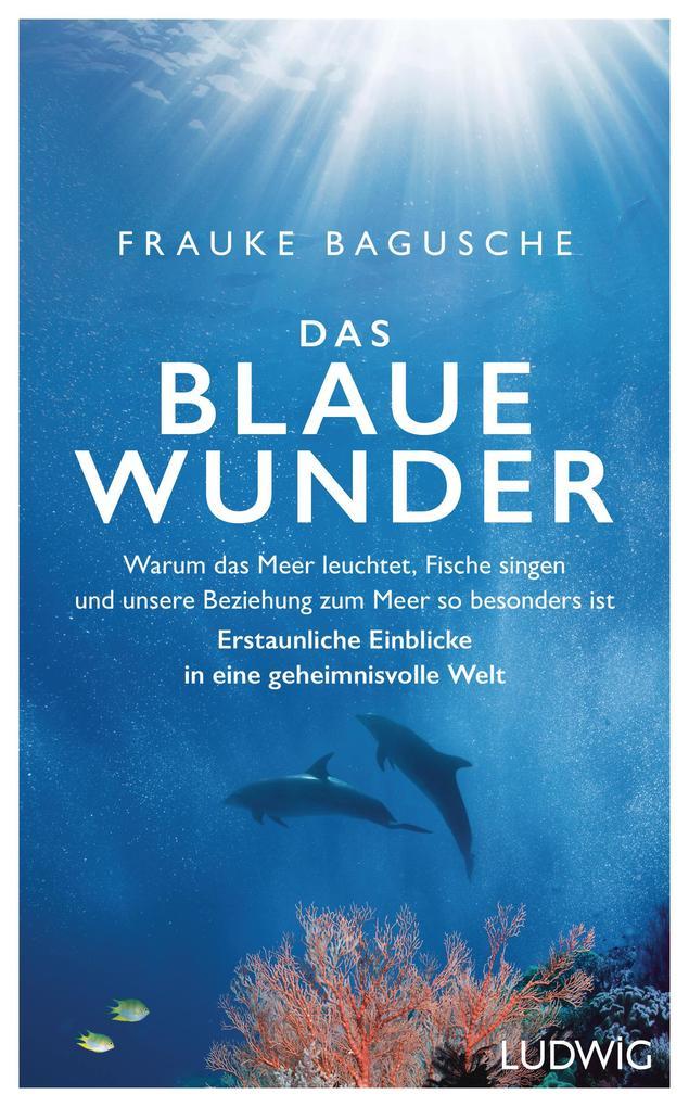 Das blaue Wunder als eBook