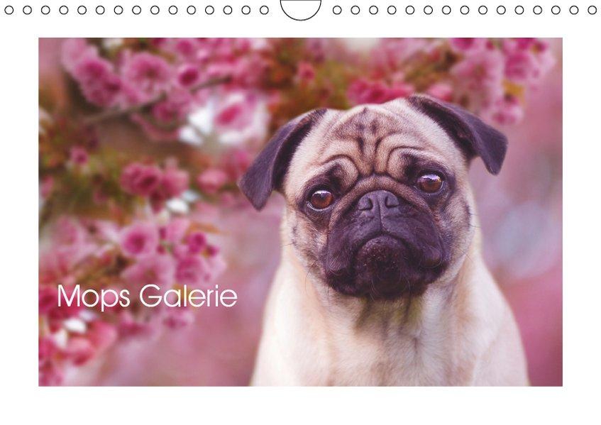 Mops Galerie (Wandkalender 2019 DIN A4 quer) als Kalender