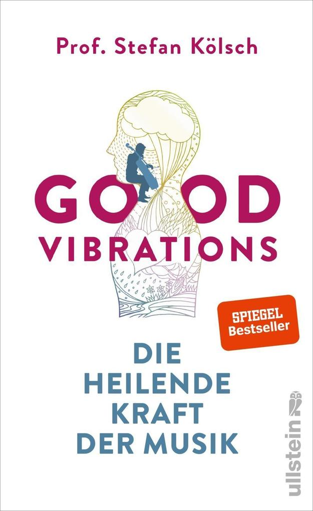 Good Vibrations als Buch