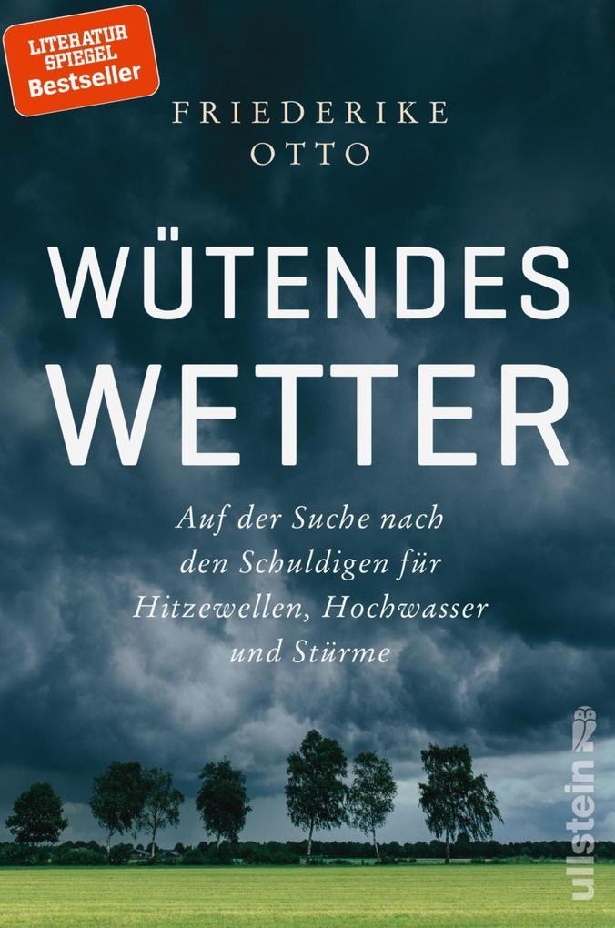 Wütendes Wetter als eBook
