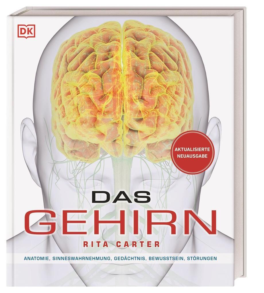 Das Gehirn als Buch