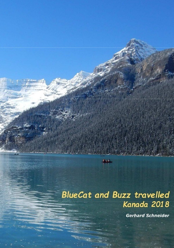 BlueCat and Buzz travelled als Buch