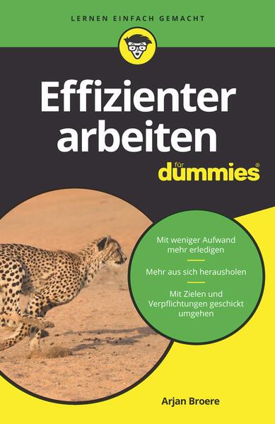 Effizienter arbeiten für Dummies als Buch