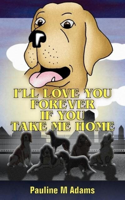 I'll Love You Forever If You Take Me Home als Taschenbuch