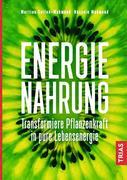 Energie-Nahrung