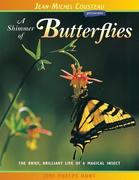 A Shimmer of Butterflies: The Brief, Brilliant Life of a Magical Insect