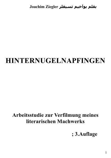 Hinternugelnapfingen Arbeitsstudie zur Verfilmung meines literarischen Machwerks; 2.Auflage als Buch (kartoniert)