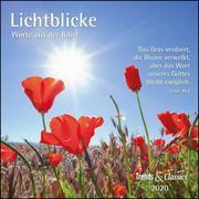 Lichtblicke 2020 - Broschürenkalender - Wandkalender - mit herausnehmbarem Poster und Bibelzitaten