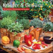Kräuter & Gewürze 2020 - Broschürenkalender - Wandkalender - mit herausnehmbarem Poster und Rezepten