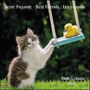 Beste Freunde Best Friends 2020 - Broschürenkalender - Wandkalender - mit herausnehmbarem Poster - Format 30 x 30 cm