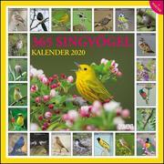 365 Singvögel 2020 - Broschürenkalender - Wandkalender - mit Poster - Format 30 x 30 cm