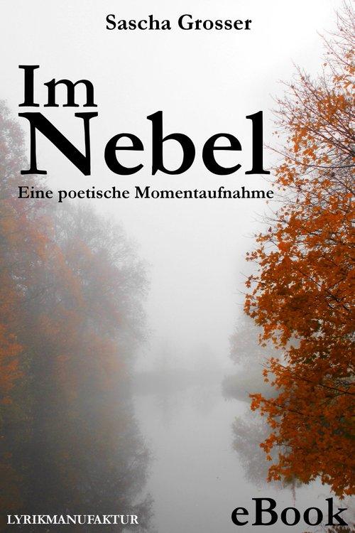 Im Nebel - Eine poetische Momentaufnahme als eBook
