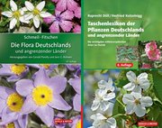 SCHMEIL-FITSCHEN Die Flora Deutschlands und angrenzender Länder 97. Auflage + Düll/Kutzelnigg: Taschenlexikon der Pflanzen Deutschlands und angrenzender Länder