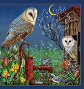 Kleine Vogel-Wunderkammer
