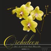 Orchideen 2020