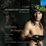 Bach: Celebration Cantatas - BWV 205a, BWV 249a