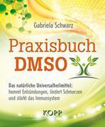 Praxisbuch DMSO