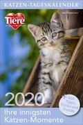 Katzen-Tageskalender 2020