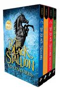 Black Stallion Adventure Set