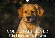 Golden Retriever - Ein Herz auf 4 Pfoten (Wandkalender 2020 DIN A4 quer)