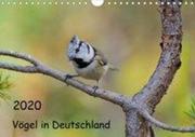 Vögel in Deutschland (Wandkalender 2020 DIN A4 quer)