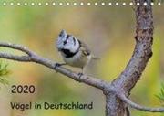 Vögel in Deutschland (Tischkalender 2020 DIN A5 quer)