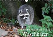 Der kleine Räuber mit Maske - Waschbären (Wandkalender 2020 DIN A4 quer)