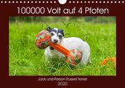 100000 Volt auf vier Pfoten - Jack und Parson Russell Terrier (Wandkalender 2020 DIN A4 quer)