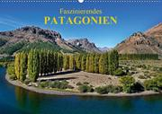 Faszinierendes Patagonien (Wandkalender 2020 DIN A2 quer)
