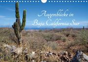 Augenblicke in Baja California Sur (Wandkalender 2020 DIN A4 quer)