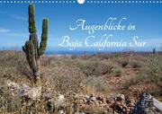Augenblicke in Baja California Sur (Wandkalender 2020 DIN A3 quer)