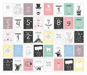 40 Baby Meilenstein-Karten für das 1. Lebensjahr für Mädchen und Junge. Baby Milestone Cards deutsch, zur Erinnerung der Entwicklung der ersten Monate. Geschenk-Set inkl. Box zur Aufbewahrung. Geschenkidee zur Geburt, Schwangerschaft, Taufe oder Baby Show