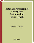 Database Performance Tuning and Optimization: Using Oracle