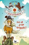 Die Haferhorde - Das ist ja der Ponygipfel! - Band 13