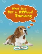 Reading Planet KS2 - What Your Pet is REALLY Thinking - Level 2: Mercury/Brown band