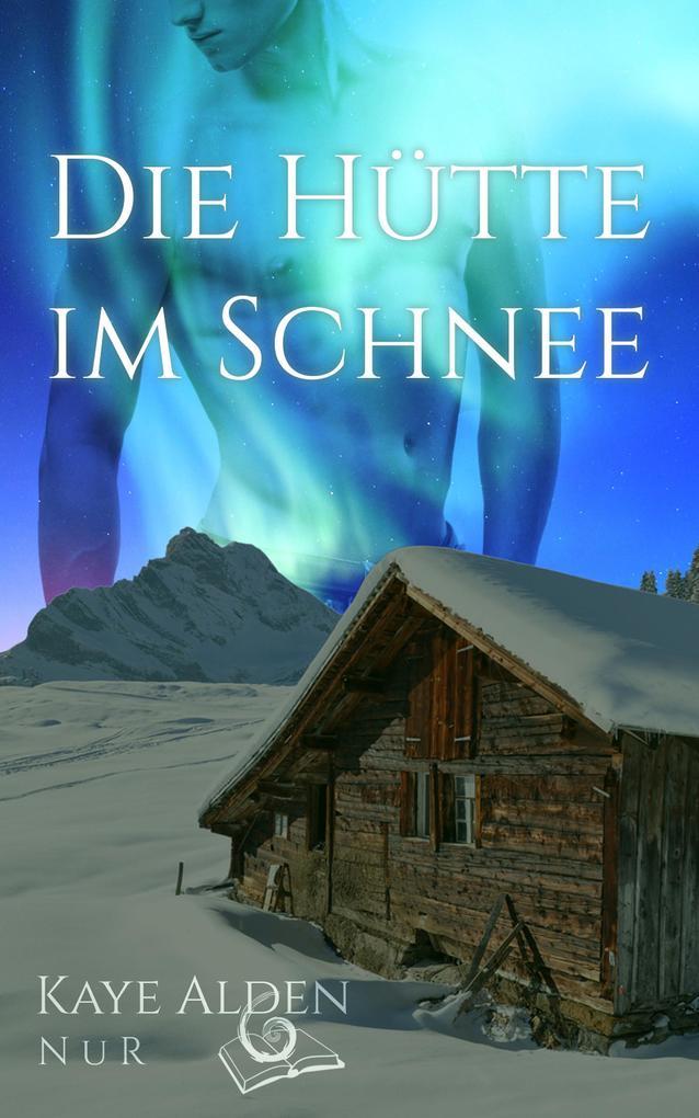 Die Hütte im Schnee als eBook epub