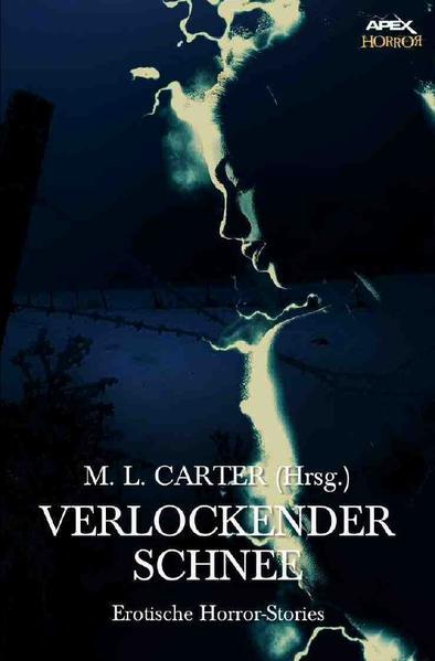 VERLOCKENDER SCHNEE als Buch (gebunden)