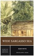 Wide Sargasso Sea: Backgrounds, Criticism