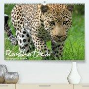 Raubkatzen(Premium, hochwertiger DIN A2 Wandkalender 2020, Kunstdruck in Hochglanz)