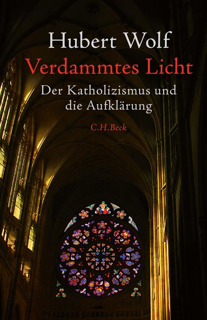 Verdammtes Licht als eBook