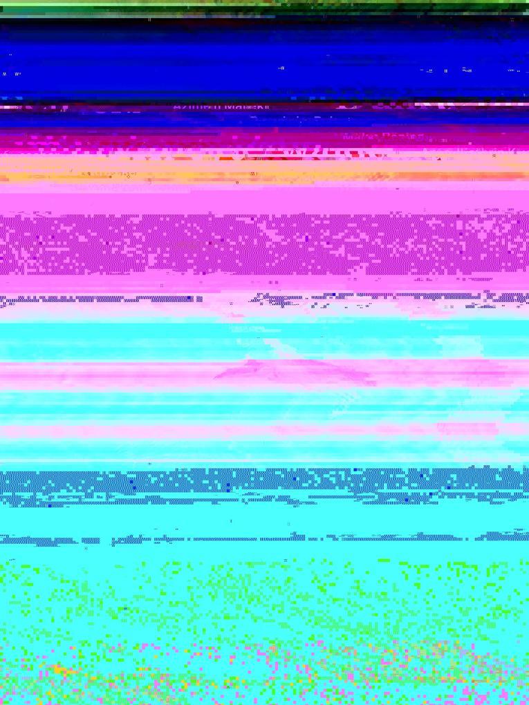 Dunkle Farben im Wunderwald als eBook pdf